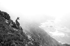 Brutto tempo? Usiamo il bianco e nero! badweather-3 © Anna Koj