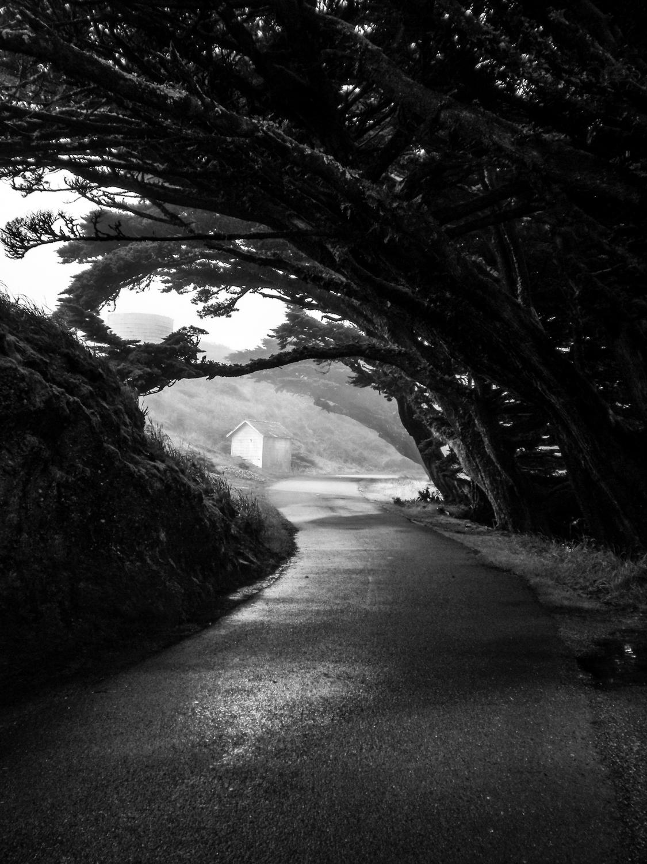 Brutto tempo? Usiamo il bianco e nero! badweather-4 © Anna Koj