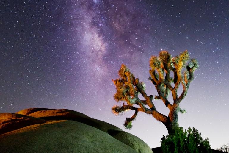 JOSHUA TREE DESERT: LA VIA LATTEA www.ishoottravels.com your ticket to travel photography. Blog di fotografia di viaggi. © Galli / Trevisan